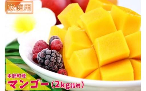 「良品」本部町産マンゴー(家庭用)(2kg詰め)