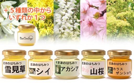【天然はちみつ】5種6瓶食べ比べセット受付再開!