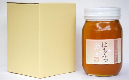 【信州駒ヶ根産】百花蜂蜜(600g)