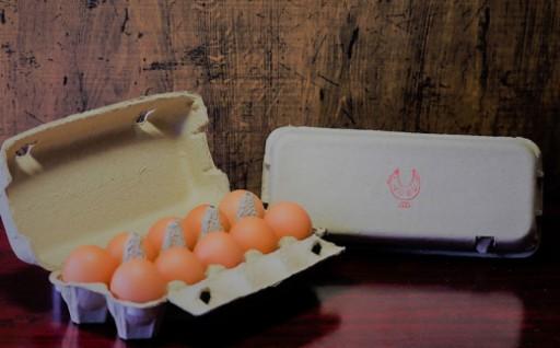 <徳森養鶏場>くがにたまご(黄金たまご)8パック