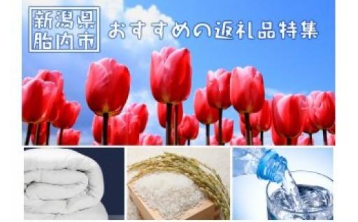 【新潟県胎内市】オススメお礼の品特集!