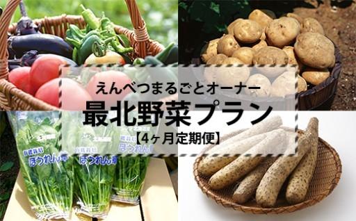 ★【定期便4ヶ月】最北の野菜プラン(全4品)
