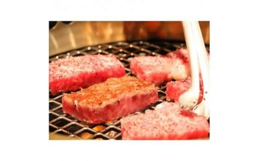夏バテなんて吹き飛ばせ!薩摩牛特選焼肉セット