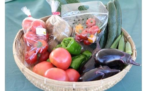 地元で人気、秦野いとう農園の野菜詰め合わせです!