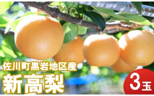 【先行予約受付中】赤ちゃんの頭ほどの大きさの梨!