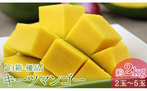【限定200】キーツマンゴー約2kg 白箱・優品