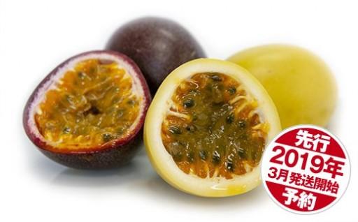 <津嘉山>パッションフルーツ黄色種入り約1kg