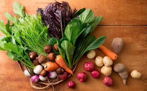 おかもファームの「安心安全おいしい野菜」セット