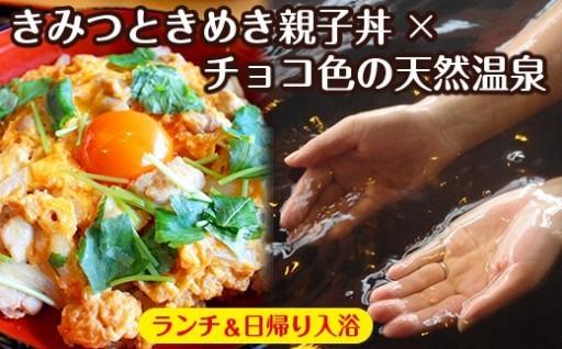 亀山温泉ホテル【日帰り入浴&ランチ】ペア券