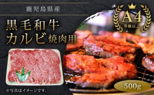 黒毛和牛A4等級以上黒毛和牛カルビ焼肉用500g
