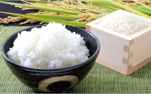 大村市でとれた選りすぐりのお米!