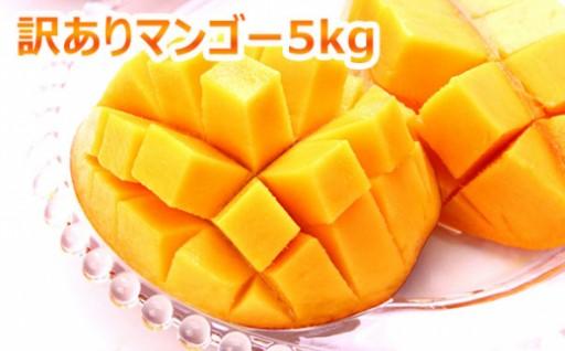本部町産マンゴー(訳あり)(5kg詰め)