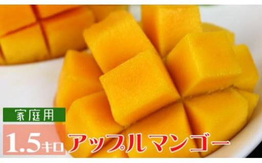 宜野座村アップルマンゴー(家庭用)(1.5kg)