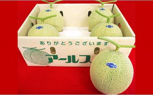 【メロンの王様】アールスメロン1箱(4~6玉)