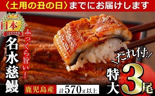 【贅沢な味わい】ふっくら香ばしい名水慈鰻