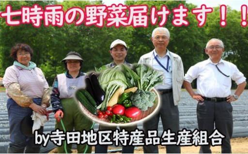 今年も始まりました!!七時雨の野菜!!