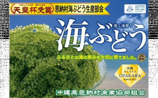 【恩納村産】生海ぶどう 500g(タレ付)