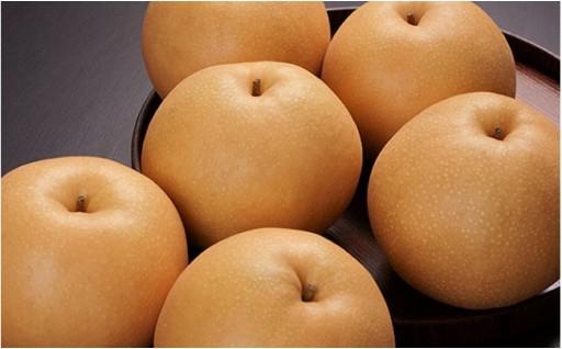 【月のような梨】白岡のあきづき梨、受付開始です!