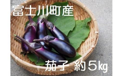 富士川町産茄子近日発送開始!