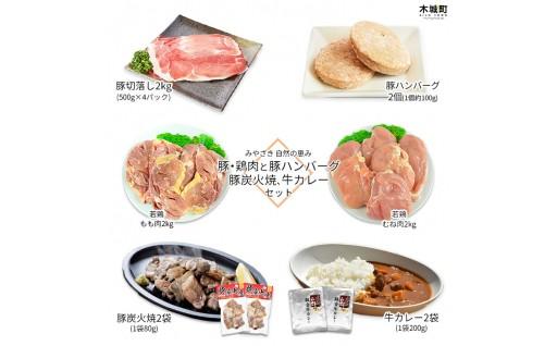 宮崎豚・鶏肉と豚ハンバーグ・豚炭火焼・牛カレー