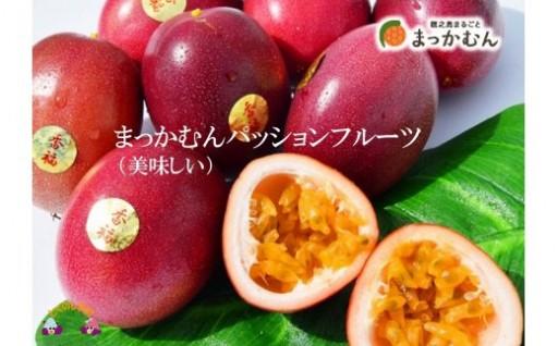 今が旬!徳之島のパッションフルーツ寄附1万円