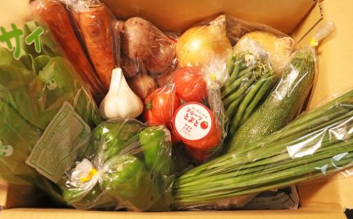 【8月発送分受付中】さかわの旬の野菜定期便