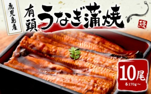 大隅産うなぎ蒲焼(有頭)170g以上 10尾