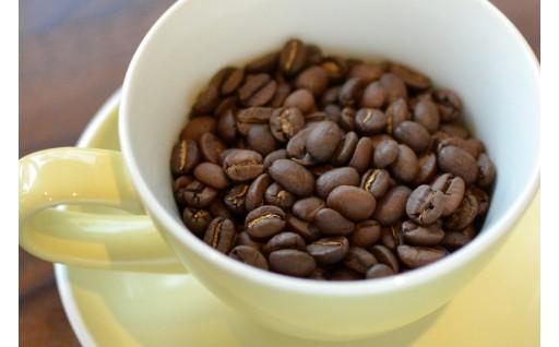 焙煎士が選んだ旬な4種類のコーヒー