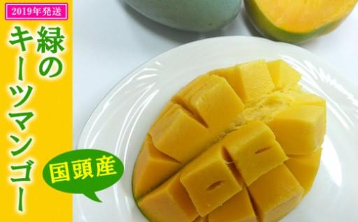 【国頭産】緑のキーツマンゴー【2019年夏発送】