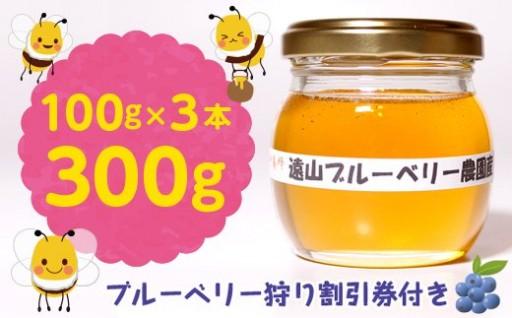 【自然のまま】ブルーベリー農園産ハチミツ300g
