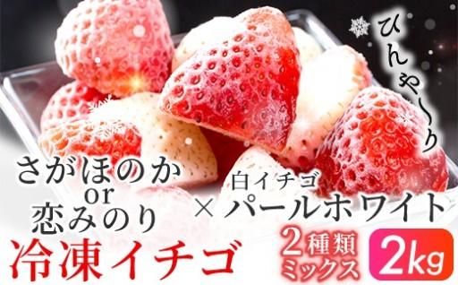 冷凍イチゴ★赤イチゴと白イチゴの2種ミックス★