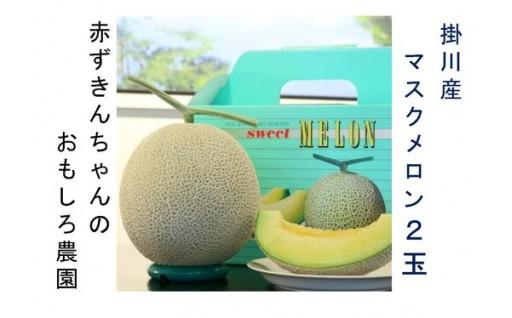 掛川産マスクメロン1.5kg以上×2玉・お届け♪