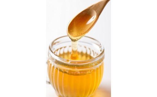 【とろ~りとろけるおいしさ!】日本ミツバチ蜂蜜