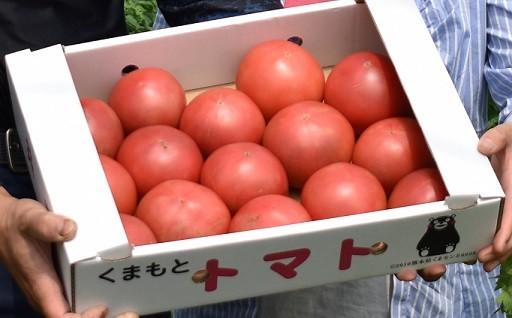 実は、南阿蘇村は、「トマト」の産地なのです!