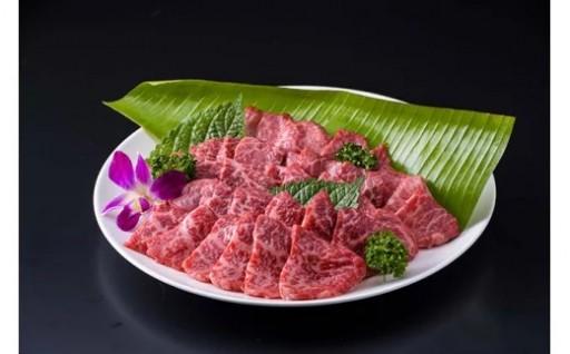 最優秀賞[もとぶ牛]【焼肉用】カルビ(500g)