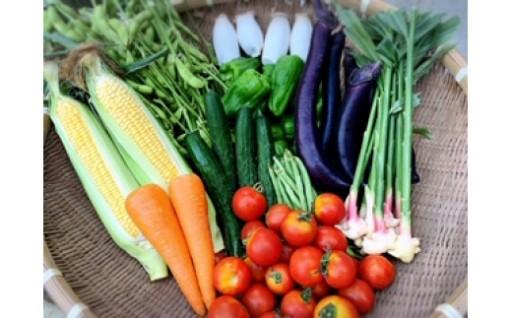 \なめがた新鮮お野菜!おたのしみBOX登場です/