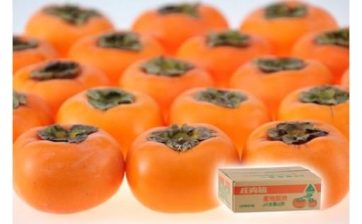 肌に良いビタミンCとAが豊富!庄内柿