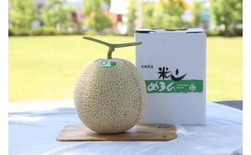 【夏限定】千石農園のアールスメロン受付開始!