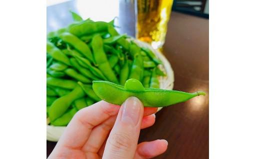 【新潟・聖籠】茶豆が美味しい季節です!
