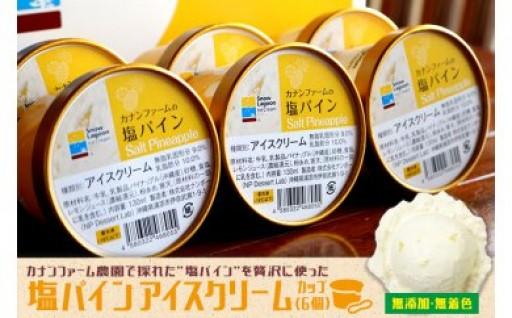 沖縄 塩パインアイス 6個セット