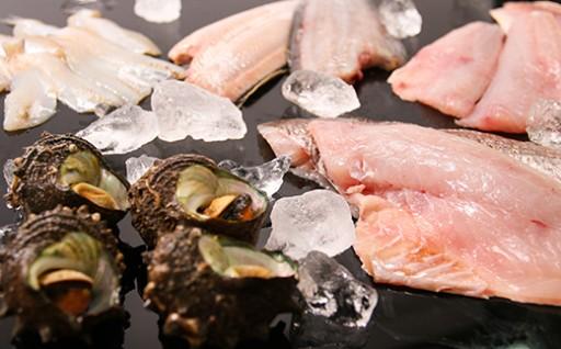 日本海のお魚はいかがですか?!