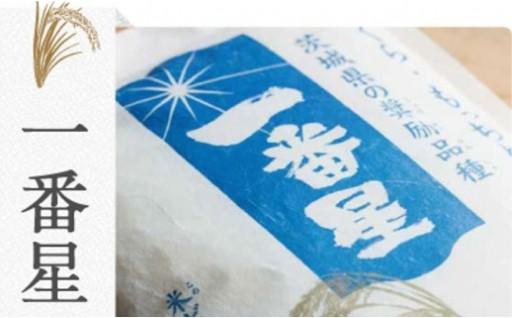 日本一早い新米!?境町産「一番星」5kg×2袋