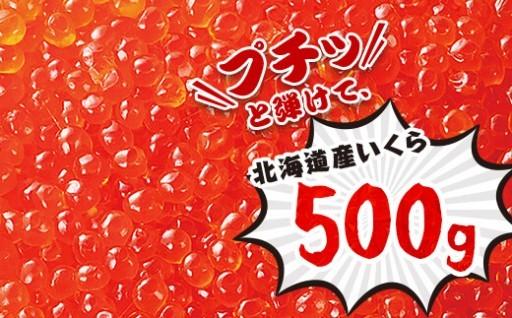 【最上級品】北海道産極旨いくら たっぷり500g