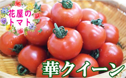 花屋のトマト「華クイーン」(パック詰め)