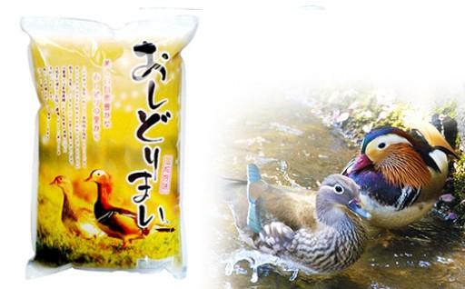 自然農法『おしどり米コシヒカリ5kg』【GCF】