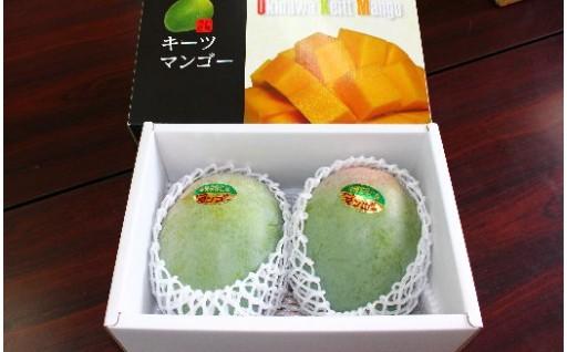 緑のマンゴーキーツ(1.5㎏)9月頃発送