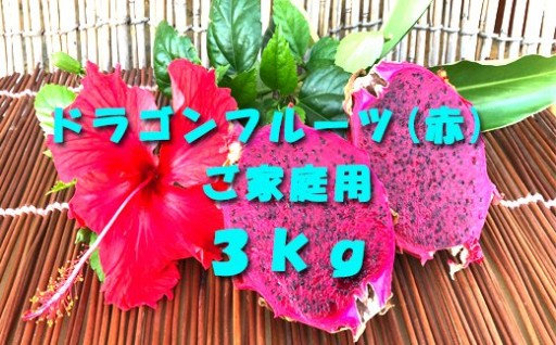 ご家庭用徳之島天城町産ドラゴンフルーツ赤3kg
