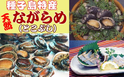 種子島特産!旬の味【ながらめ(とこぶし)】!