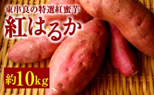 鹿児島県東串良町産特選紅蜜芋!紅はるか10kg