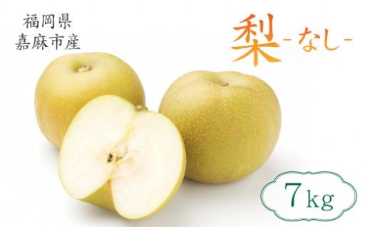 その時期に採れる美味しい品種の梨!!